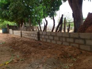 De muur in aanbouw